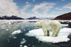mudancas climaticas 300x199 - Robert Downey Jr. investe milhares de dólares no combate às mudanças climáticas.
