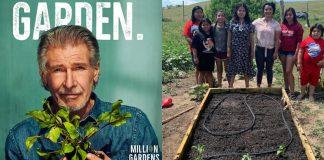 projeto-movimento-de-milhoes-de-jardins-levara-horta-para-quem-tem-fome