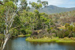 reserva 300x200 - Casal herda mais de um milhão de dólares e usou para salvar uma reserva na Tasmânia