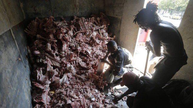 CARIOCAS PEGAM RESTO DE CARNE E OSSOS2.fw  - FOME: Sem comida, cariocas recorrem a restos de ossos e carnes rejeitados pelos supermercados